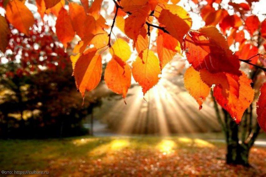 Знаки зодиака, для которых вторая половина октября станет настоящей дорогой в рай