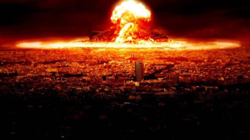 Названы животные, которые переживут ядерную войну