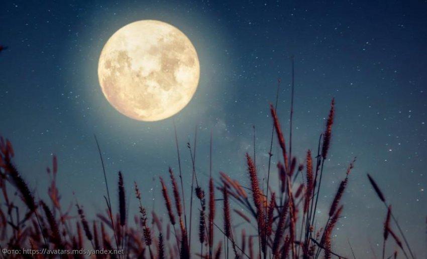 Лунный прогноз красоты и здоровья на 17 октября