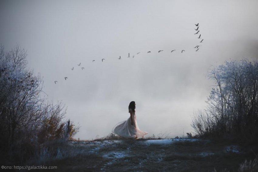 Три знака зодиака, которые в ноябре навсегда попрощаются с одиночеством
