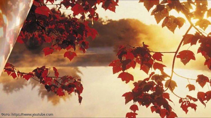Советы от ангела-хранителя на 29 октября для всех знаков зодиака