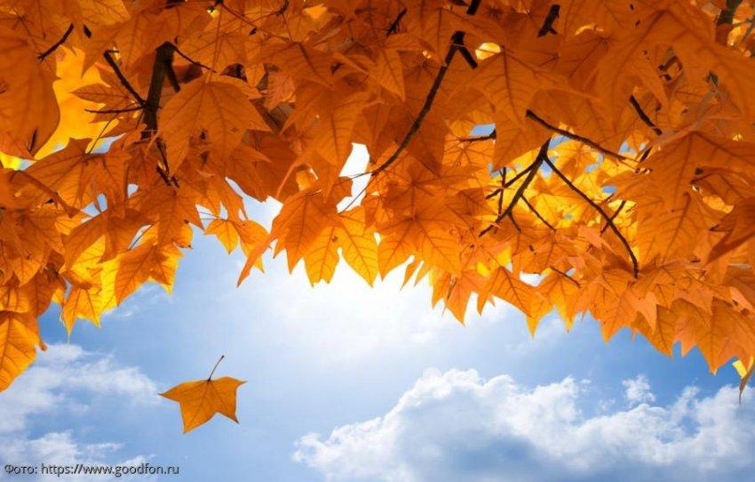 Советы от ангела-хранителя на 30 октября для всех знаков зодиака