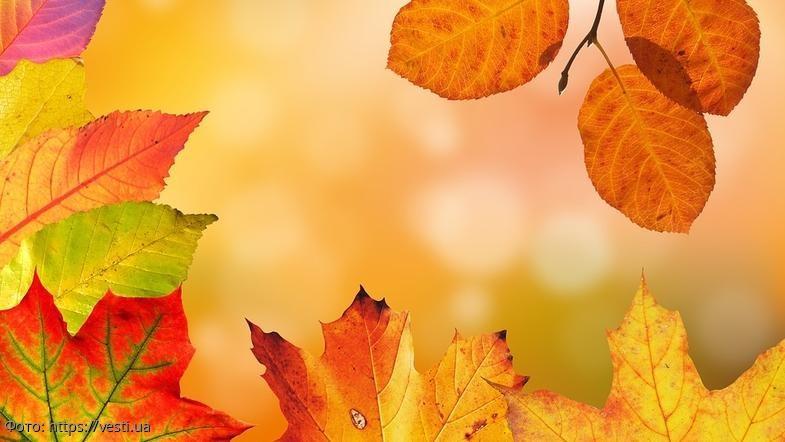 Советы от ангела-хранителя на 6 ноября для всех знаков зодиака