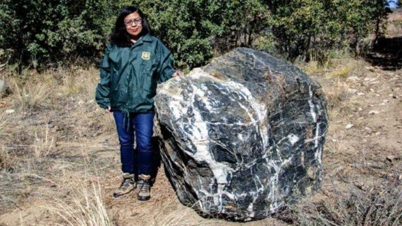 Некто сперва бесследно похитил огромный валун в парке Аризоны, а затем вернул его: детали мистического воровства