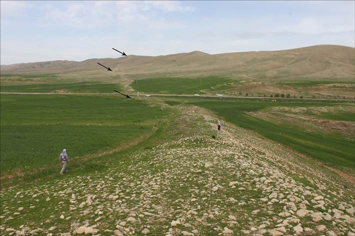 Новая археологическая загадка: В Иране обнаружили древнюю 115-километровую каменную «стену»