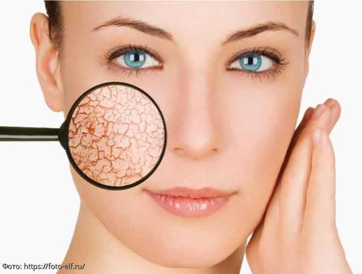 Интересные факты о коже, о которых вы раньше не знали