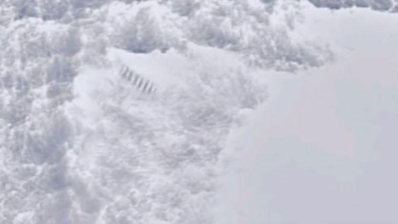 В Антарктиде обнаружили загадочные столбы