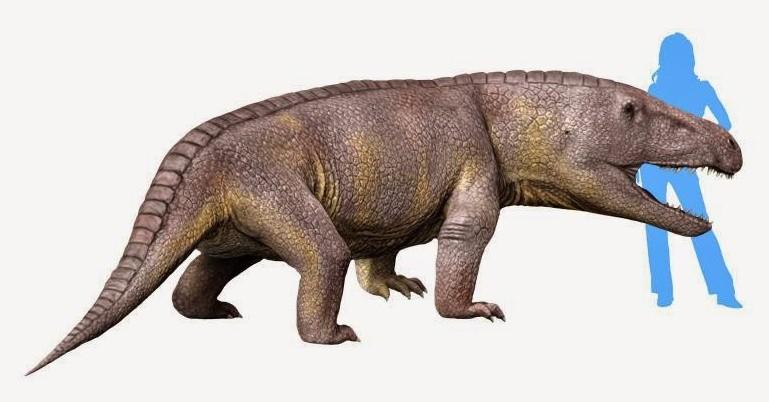 250 млн лет назад на территории России жили необычные ящеры с огромной головой
