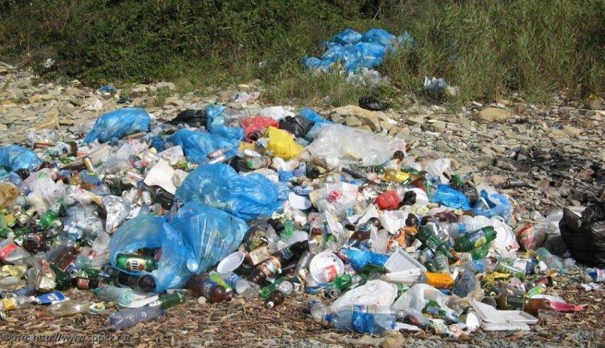 Сбор и утилизации бытовых отходов: как это работает в США