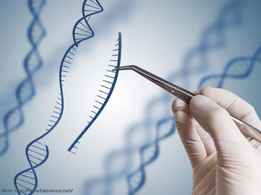 Ученые из Пенсильвании разработали метод борьбы с онкологией на генном уровне