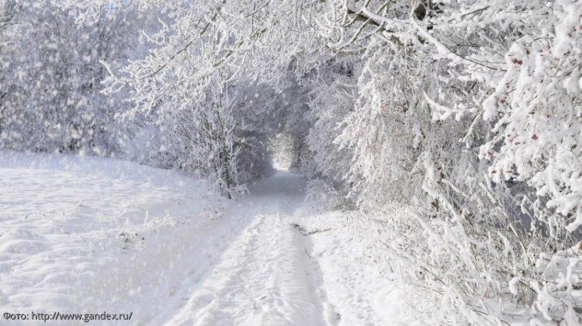 Павел Глоба назвал три знака зодиака, у которых зимой произойдут переломные моменты в жизни