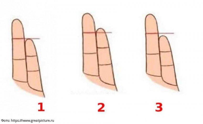 Тест: узнайте, каков человек в любви, по форме его пальцев рук