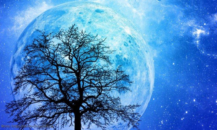 Лунный прогноз красоты и здоровья на 10 ноября