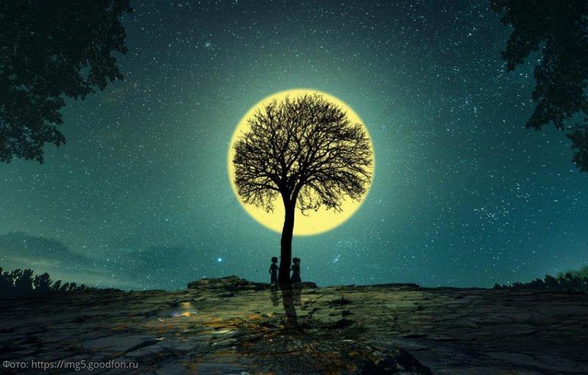 Лунный прогноз красоты и здоровья на 15 ноября