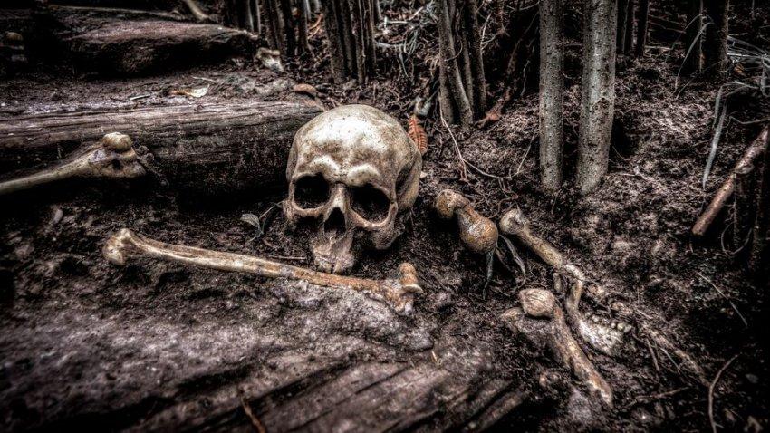 В Башкирии нашли могилу шестиметрового великана