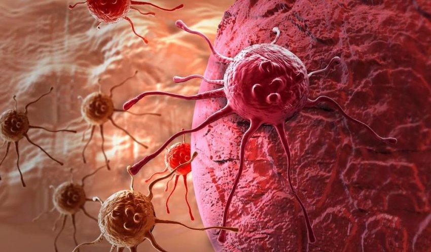 В Южной Корее люди массово лечат рак собачьим лекарством от глистов