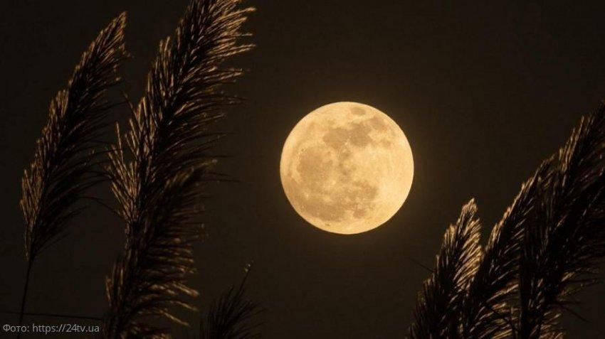 Лунный прогноз красоты и здоровья на 24 ноября