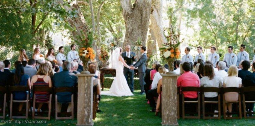 Жених прямо на свадьбе выдвинул невесте требование, которое заставило ее сбежать