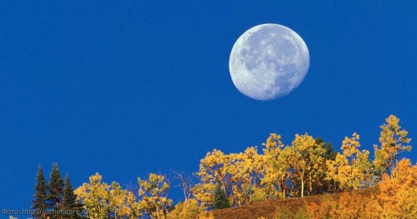 Лунный прогноз красоты и здоровья на 28 ноября