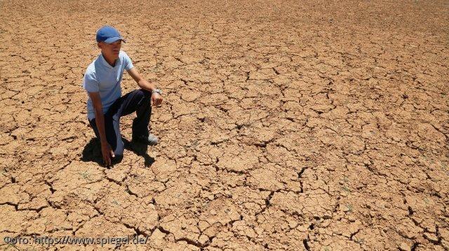 Перспективы 2020: ООН ожидает 168 миллионов человек, которые будут нуждаться в помощи