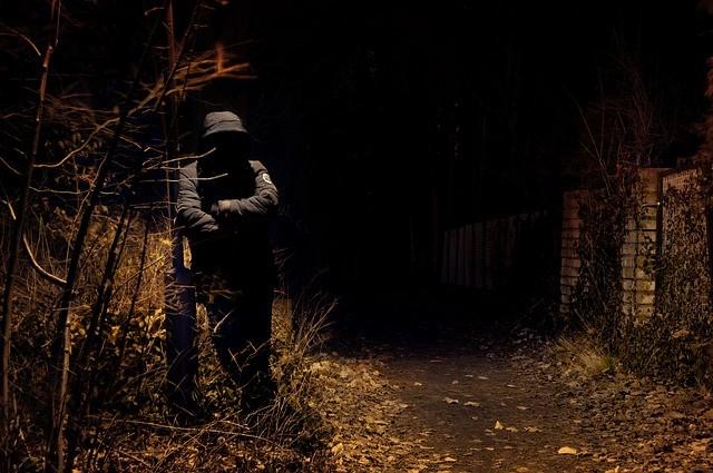 Пугающее исчезновение Дианы Огат
