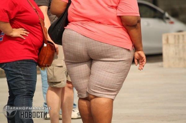 Эпидемия ожирения нарастает: В США через 10 лет каждый второй станет толстяком