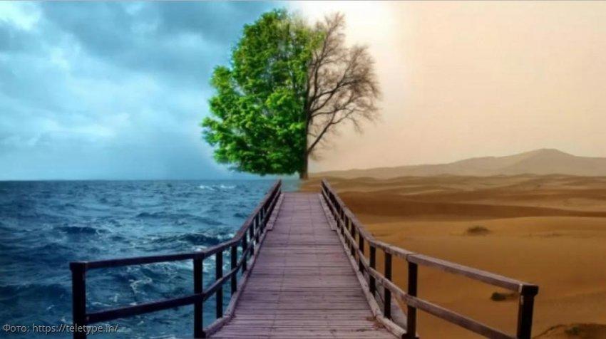 Опять 25: в Мадриде начались климатическое переговоры COP25