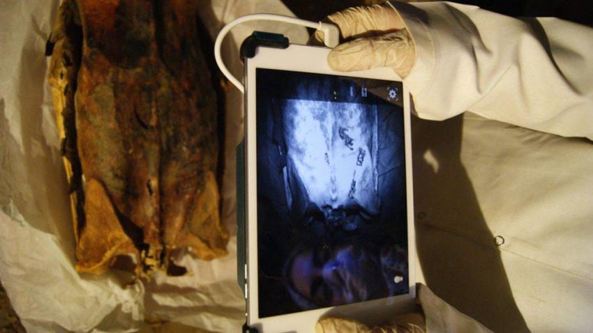 На древнеегипетских мумиях нашли скрытые тату