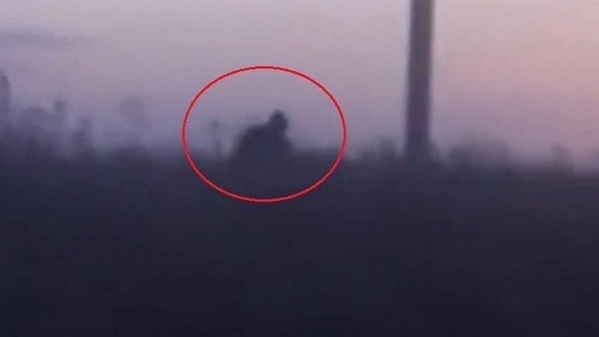 Стали известны результаты поиска снежного человека в Башкирии