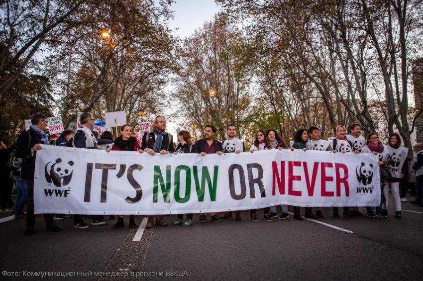 Полмиллиона не считая Греты: в Мадриде прошел крупнейший марш за климат