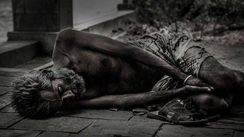 На Земле скоро наступит голод: ученые сделали неутешительный прогноз