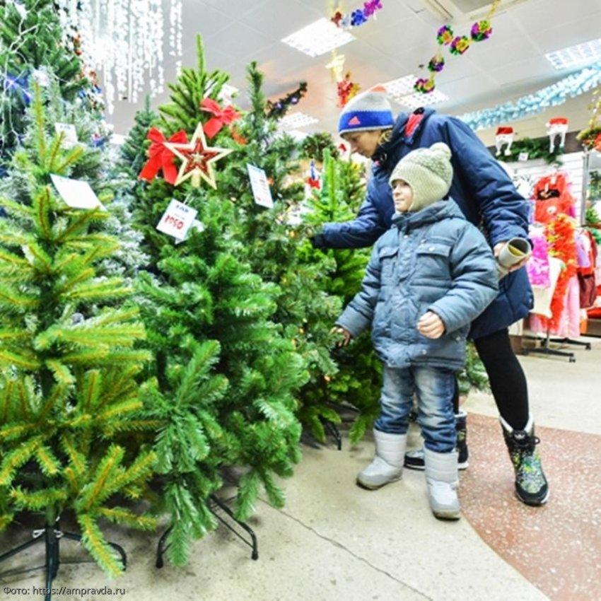 Роскачество дало рекомендации по выбору новогодней елки