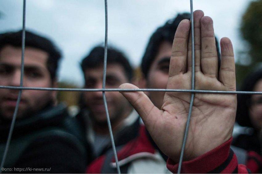 В Темрюкском районе сотрудники краевого погрануправления задержали очередных нелегалов