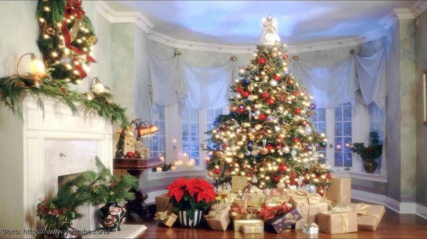 Где поставить елку в доме, чтобы в новом году исполнилось загаданное желание