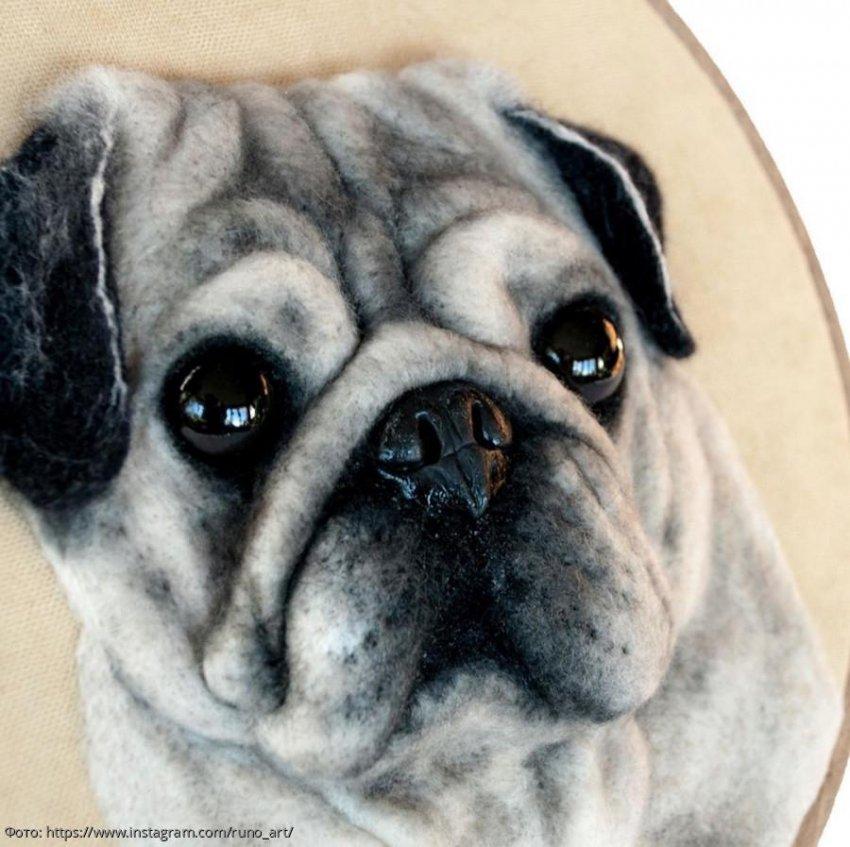 Украинская художница Анна Цуканова создает портреты животных, которые кажутся живыми