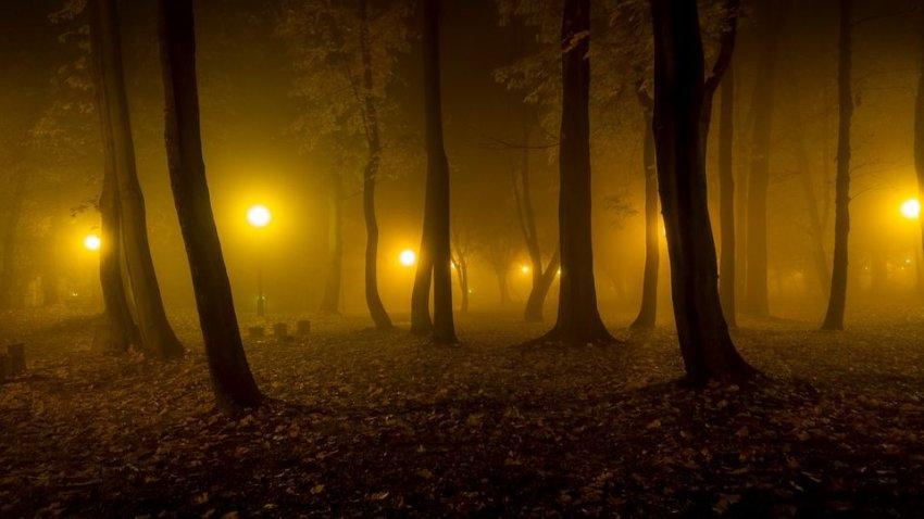 День стал ночью: три случая в истории, когда среди белого дня наступала полная темнота