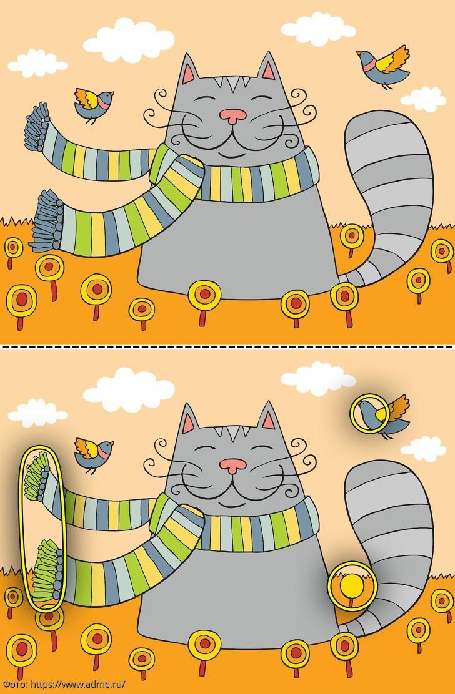 Разминка для мозгов: найди в картинках с кошкой 3 отличия