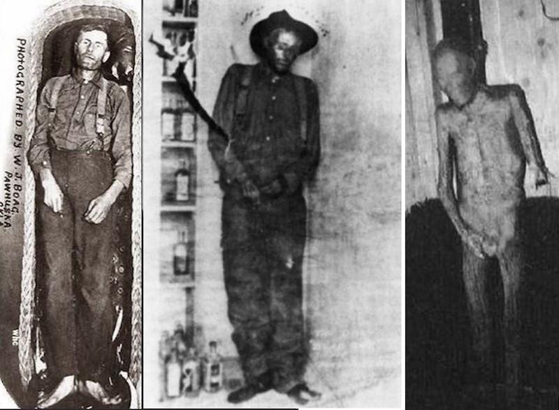 Удивительная прижизненная и посмертная история грабителя-неудачника Элмера Маккерди