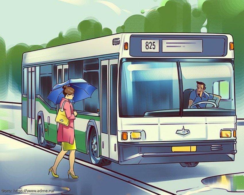 Тест на внимательность: посмотрите на картинку с автобусной остановкой и определите, что на ней не так
