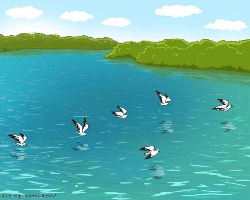 Тест на внимательность: посмотрите на картинку с озером и определите, что на ней не так