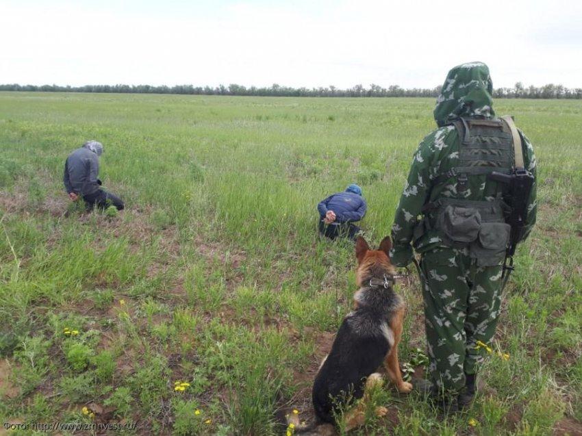 Погрануправление ФСБ России по Краснодарскому краю информирует о попытках незаконного пересечения государственной границы