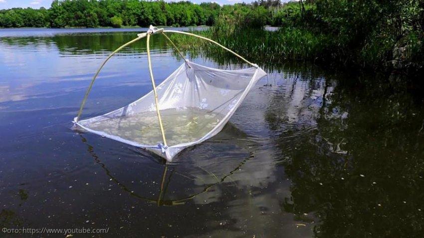 За незаконную добычу водных биоресурсов в отношении двух жителей Краснодарского края возбуждено уголовное дело