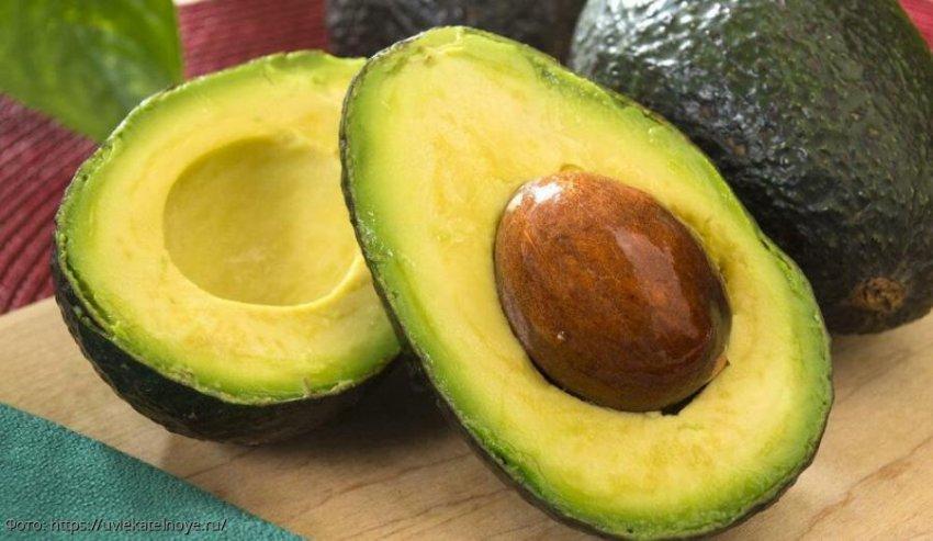Совет: как выбрать авокадо и как его правильно хранить