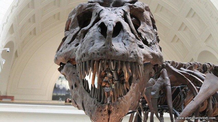 В штате Юта нашли огромного динозавра с радиоактивным черепом