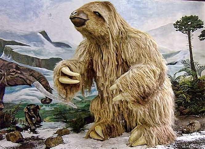 Всего 60 лет назад в штате Нью-Йорк видели огромных вымерших ленивцев | Паранормальные новости