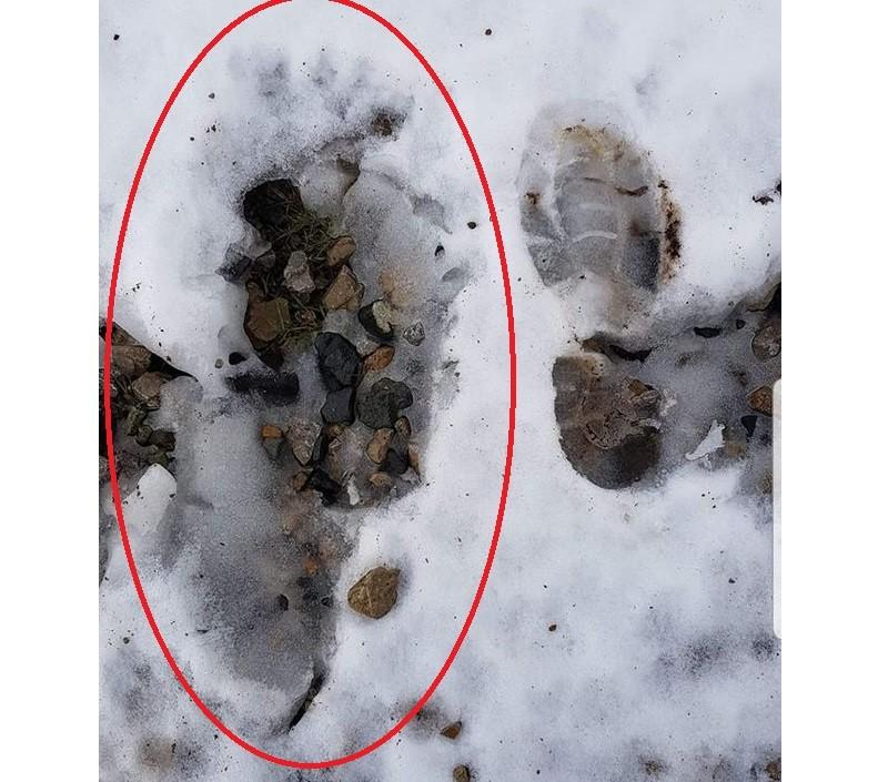 В Дублине нашли огромные следы непонятного существа | Паранормальные новости