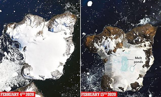 Всего за 10 дней февраля 2020 года антарктический остров лишился 20% своего льда
