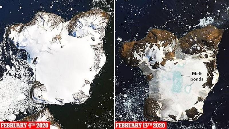 За 10 дней февраля на антарктическом острове растаяло 20% льда