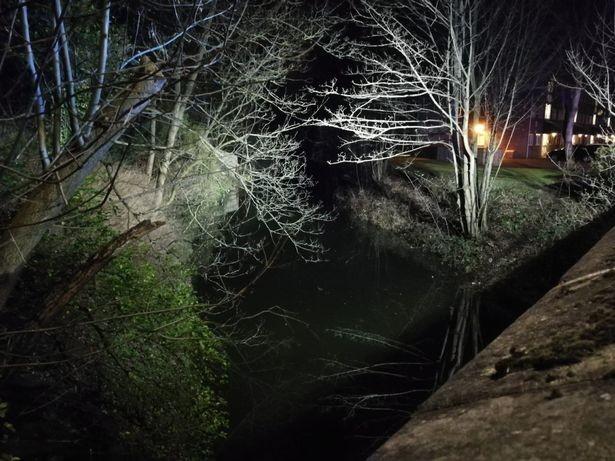 В Англии 3-метровый гуманоид оторвал оленю ноги