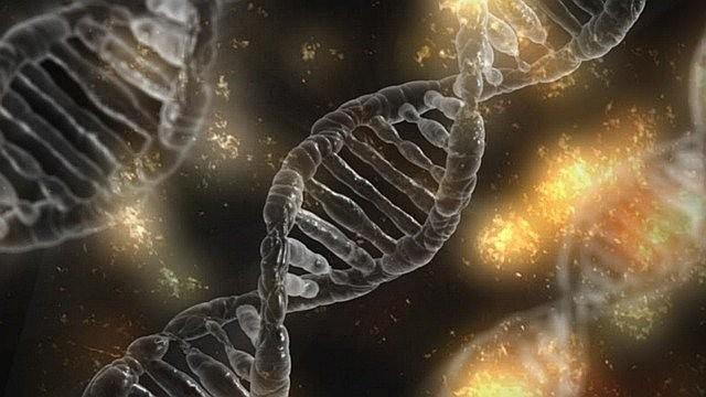 Загадка неизвестных генов в ДНК африканцев и связь с криптозоологией